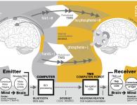 Brain-Communication.png