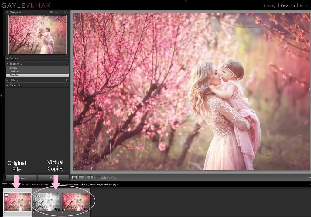 how to make a copy of a picture in Lightroom